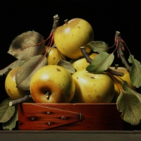 "Golden Delicious 2015 10 1/2 x 12 1/2"" oil on panel"